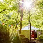 Larkhill Tipis & Yurts - Yurt