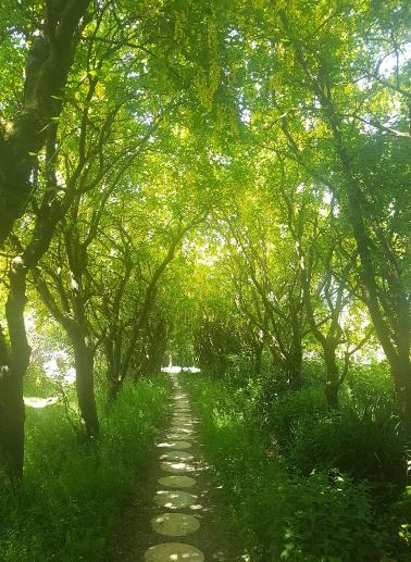 Larkhill Tipis & Yurts - Woodland